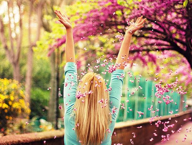 spring, primavera, flowers