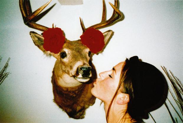 beijo, kiss, funny